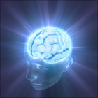 5脳優位診断プログラム.jpg